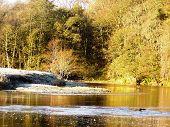 Frosty Riverbank  Deveron Riverd