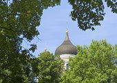 Nevsky Church Through Trees In Tallinn Estonia