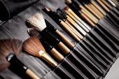 Set Of Make-up Brushes. Tools For Professional Visage, Maskara, Eyeshadows, Foundation, Lipstick, Bl poster