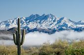 stock photo of blanket snow  - A thick blanket of fog hovers over the Salt River in central Arizona following a winter storm that delivered a fresh coating of snow on Four Peaks and the surrounding foothills - JPG