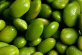 image of soy bean  - Image of bright green edamame beans close - JPG