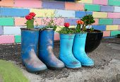 Outside Planters With Old Boots Used As Containers For Growing Plants. Waste Recycling Concept. poster