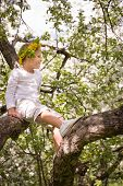A Little Boy Sits On A Blooming Apple Tree In The Park. Blooming Apple Trees In The Garden. Spring I poster