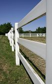 Fence Of Ranch