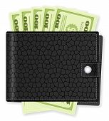 Wallet With Dollar Banknote
