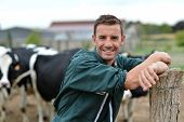 foto of cattle breeding  - Herdsman standing in front of cattle in farm - JPG