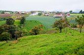 Tierras agrícolas en Costa Rica