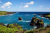 Maui's Vibrant Coastline