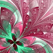 Beautiful Fractal Flower In Green And Pink. Computer Generated Graphics.