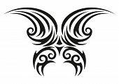 Butterfly decorative illustration