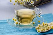 stock photo of naturopathy  - Chamomile Herbal Tea in a glass cup - JPG