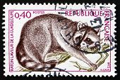 Postage Stamp France 1973 Guadeloupe Raccoon, Animal