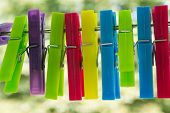 colored clothespins in garden