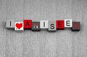 I Love Aniseed