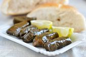Dolmades with lemon wedges and pita bread