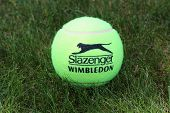 Slazenger Wimbledon Tennis Ball on grass tennis court