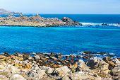 Blue Water At Damas Island