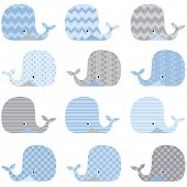 Cute Whale pattern set - Illustration