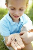 Young boy with beetle