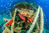 stock photo of grouper  - Tropical fish and grouper around an shipwreck underwater - JPG
