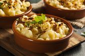 Baked Homemade Macaroni And Cheese