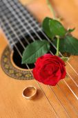 Classical Guitar &Red Rose