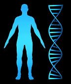 3D concept for genetic health research and the human genome