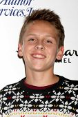 LOS ANGELES - NOV 30:  Jacob Bertrand at the 2014 Hollywood Christmas Parade at the Hollywood Boulevard on November 30, 2014 in Los Angeles, CA