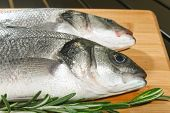 Seabass With Lemon And Rosemary