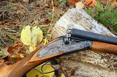 A Wooden Retro Shotgun In Autumn
