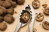 pic of nutcracker  - walnuts and nutcracker on the wooden table - JPG