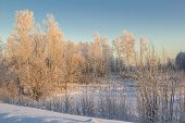 image of siberia  - Nature of Western Siberia winter frost sketches mine 35 degrees Celsius - JPG
