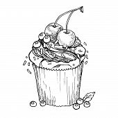 Hand Drawn Vector Illustration - Sweet Cupcake With Cherry