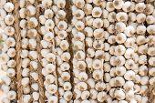 Garlic Braids Hanging In A Farmer's Market In Cuba
