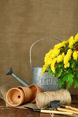Rustic table with flowers, pots, watering can and plants on sackcloth background. Planting flowers concept
