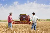 stock photo of combine  - Peasant and businessman looking at combine harvester on wheat field - JPG