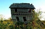 foto of unnatural  - Old farm house with wild yellow sunflowers in front of it - JPG