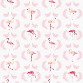 pic of flamingo  - Flamingo Bird Background  - JPG