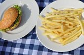 foto of hamburger-steak  - Hamburger and french fries on a blue checkered cloth - JPG