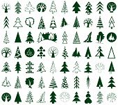 image of conifers  - green icons conifers and deciduous trees on white background stylized - JPG