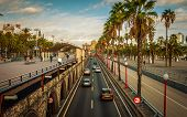 image of tree lined street  - Cars and people on late afternoon streets and pedestrian ways in Seaside Barcelona - JPG