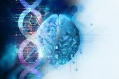 3D Illustration Of Brain On Dna Molecules  Abstract Technology Background poster