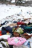rubbish heap in winter forest