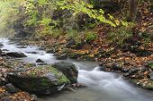 A  cascade river in the forests at mountains by name Jesenik at Czech republic
