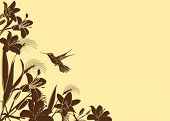 Tropical Flower background with hummingbird