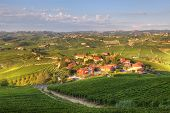 View on small village among vineyards and hills of Piedmont, northern Italy.