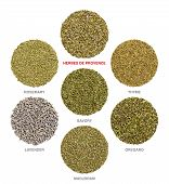 Herbes De Provence With Single Ingredients. Dried Rosemary, Savory And Thyme Are Always Used, Lavend poster