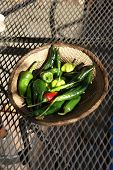 A Variety Of Fresh Green Chilies
