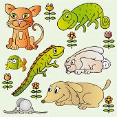 Set of pets illustrations