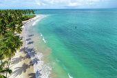 Aerial View Of Carneiros Beach, Tamandaré, Pernambuco, Brazil. Great Beach Scene. Beautiful Landscap poster